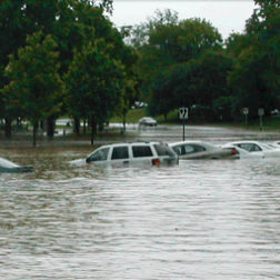 Action Alert: Congress, Do Not Let Flood Insurance Expire