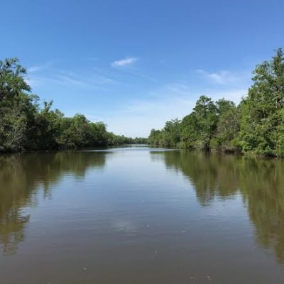 Ecotourism in Coastal Alabama